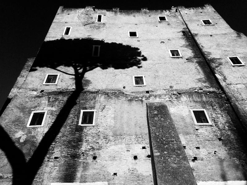 ROMA E CITTA' DEL VATICANO